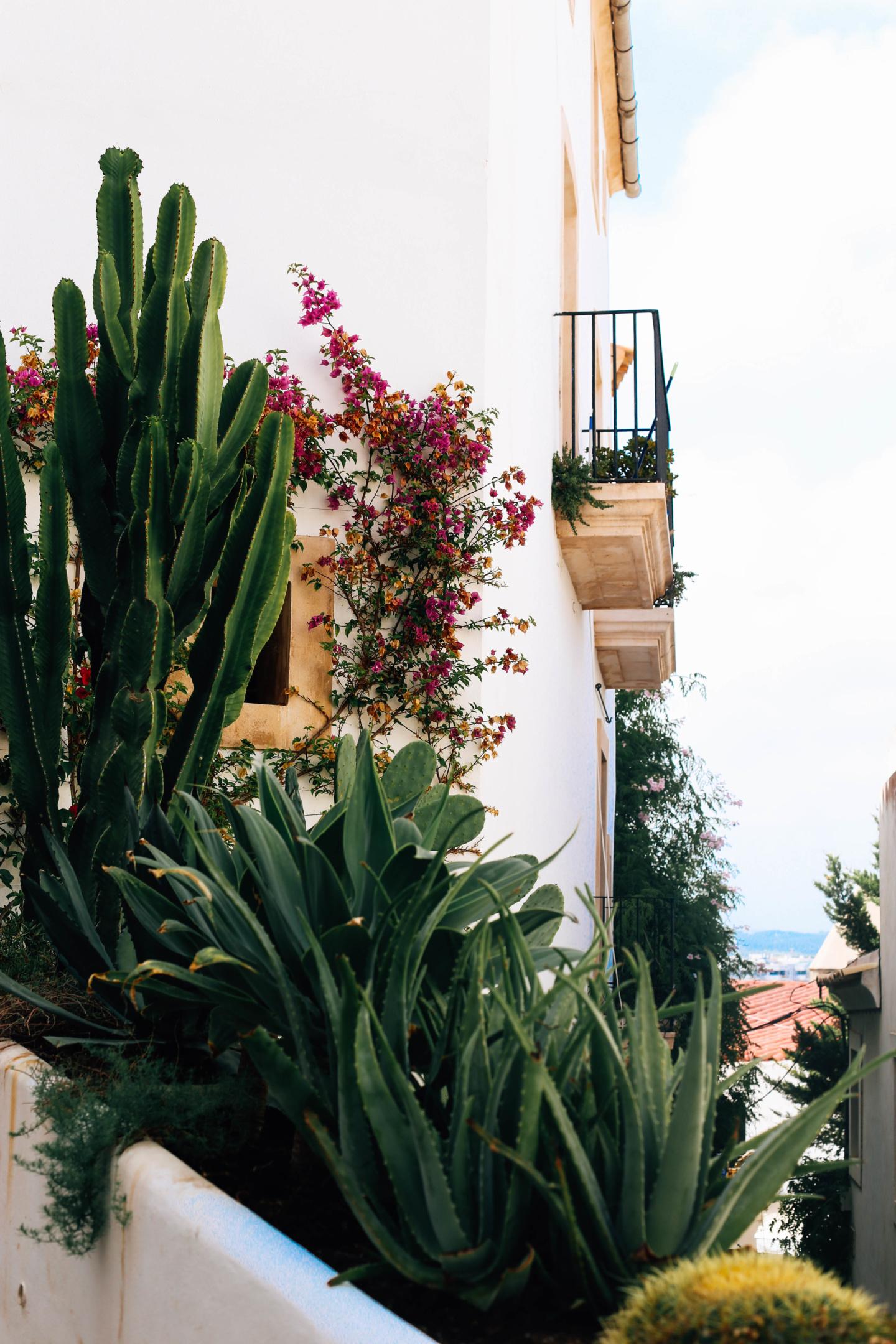 Rues Ibiza