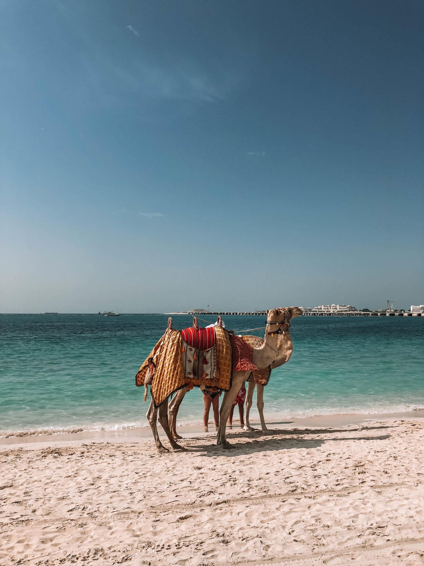 Plage de Jumeirah Dubaï - Blondie Baby blog mode et voyages