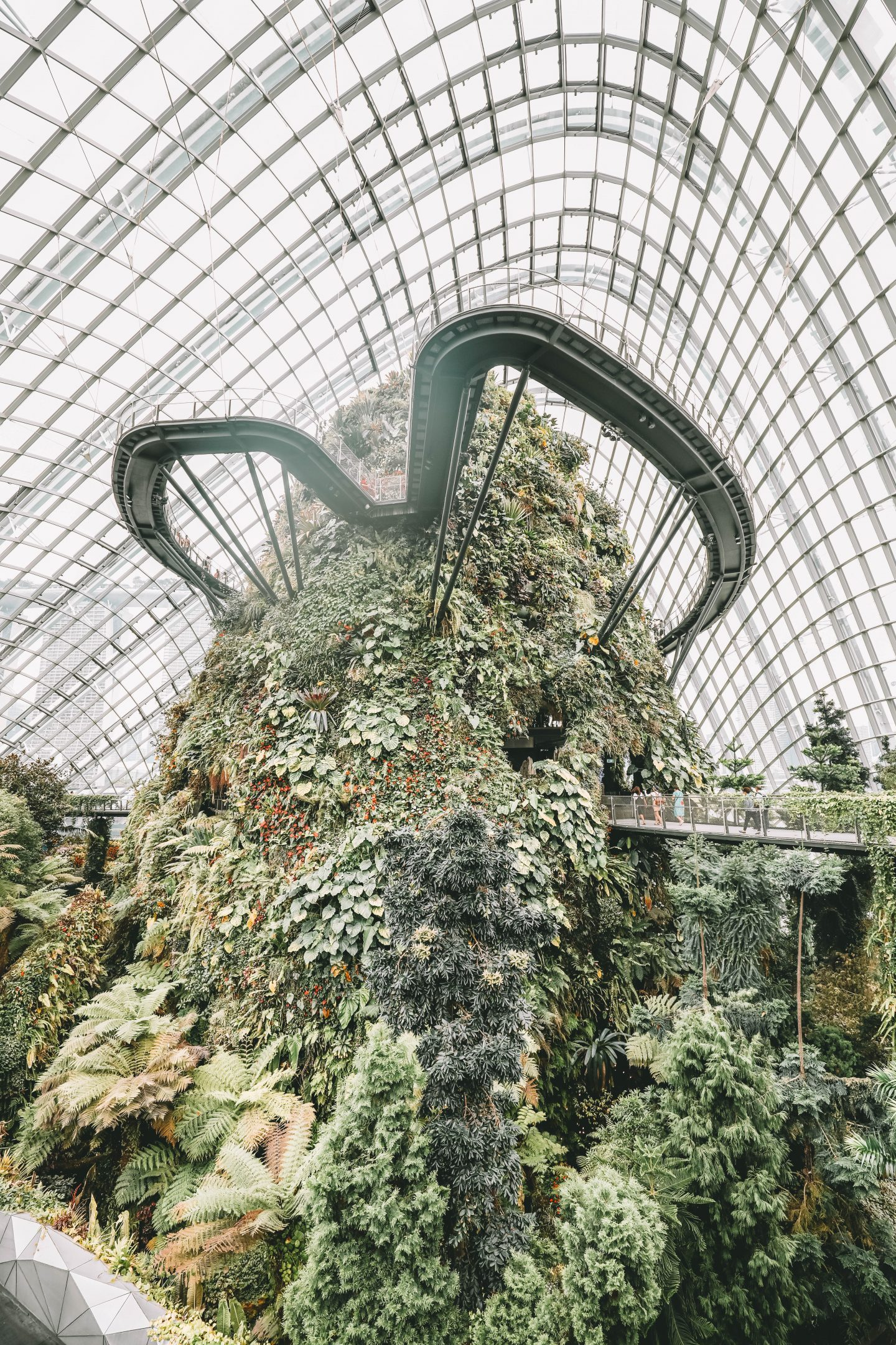 Cloud Forest Singapour - Blondie Baby blog mode Paris et voyages