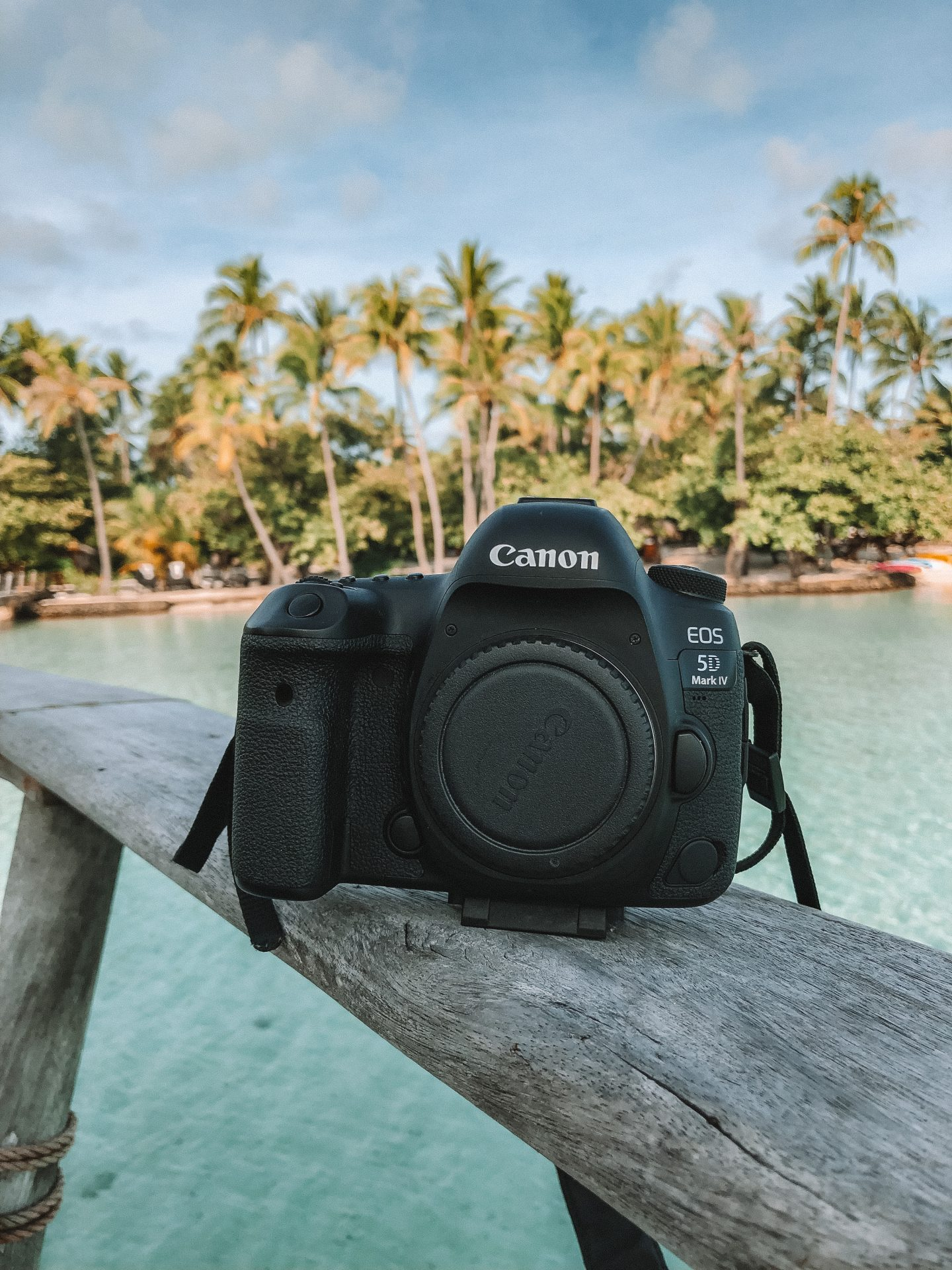 Canon 5D Mark IV - Blondie Baby blog mode et voyages