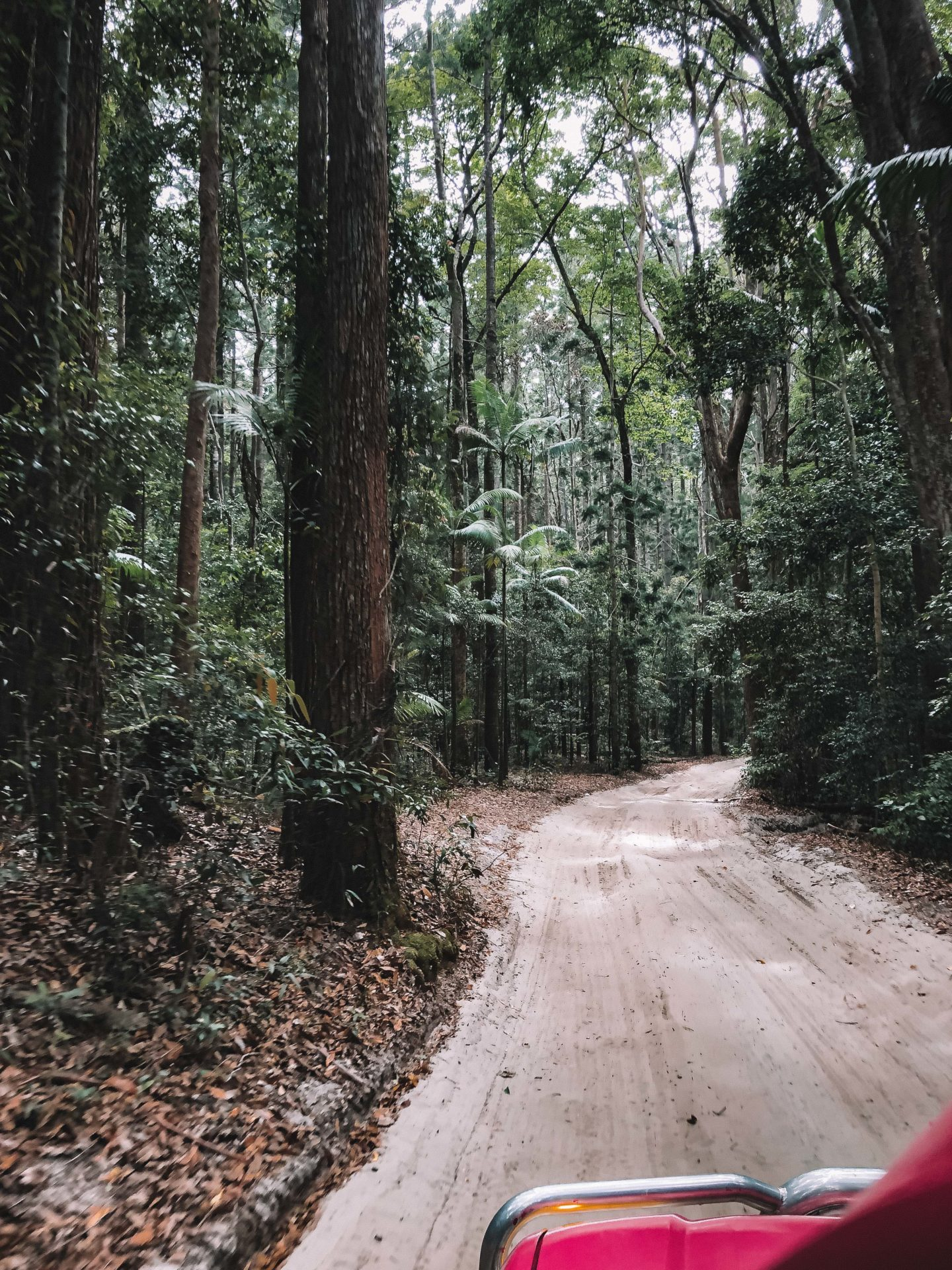 4x4 Fraser Island - Blondie Baby blog mode et voyages