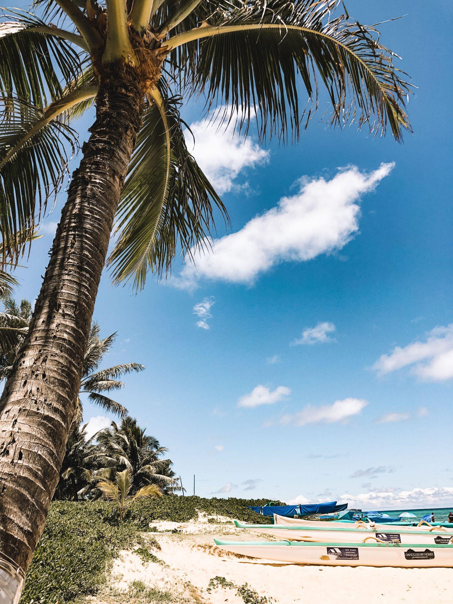 Visiter Hawaii - Blondie Baby blog mode et voyages
