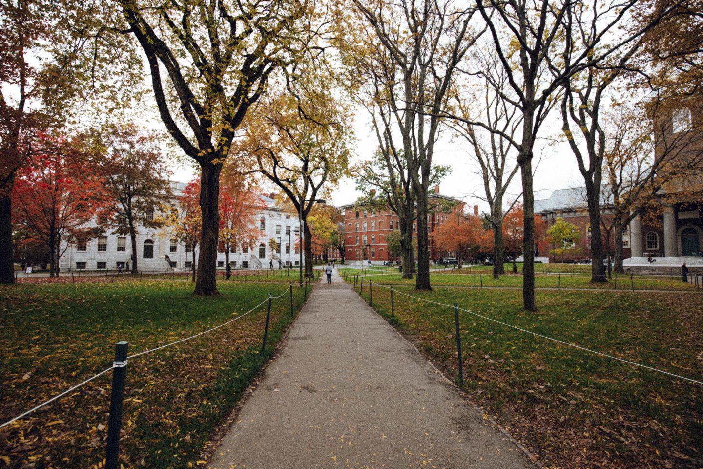 Université d'Harvard - Blondie Baby blog voyages et mode