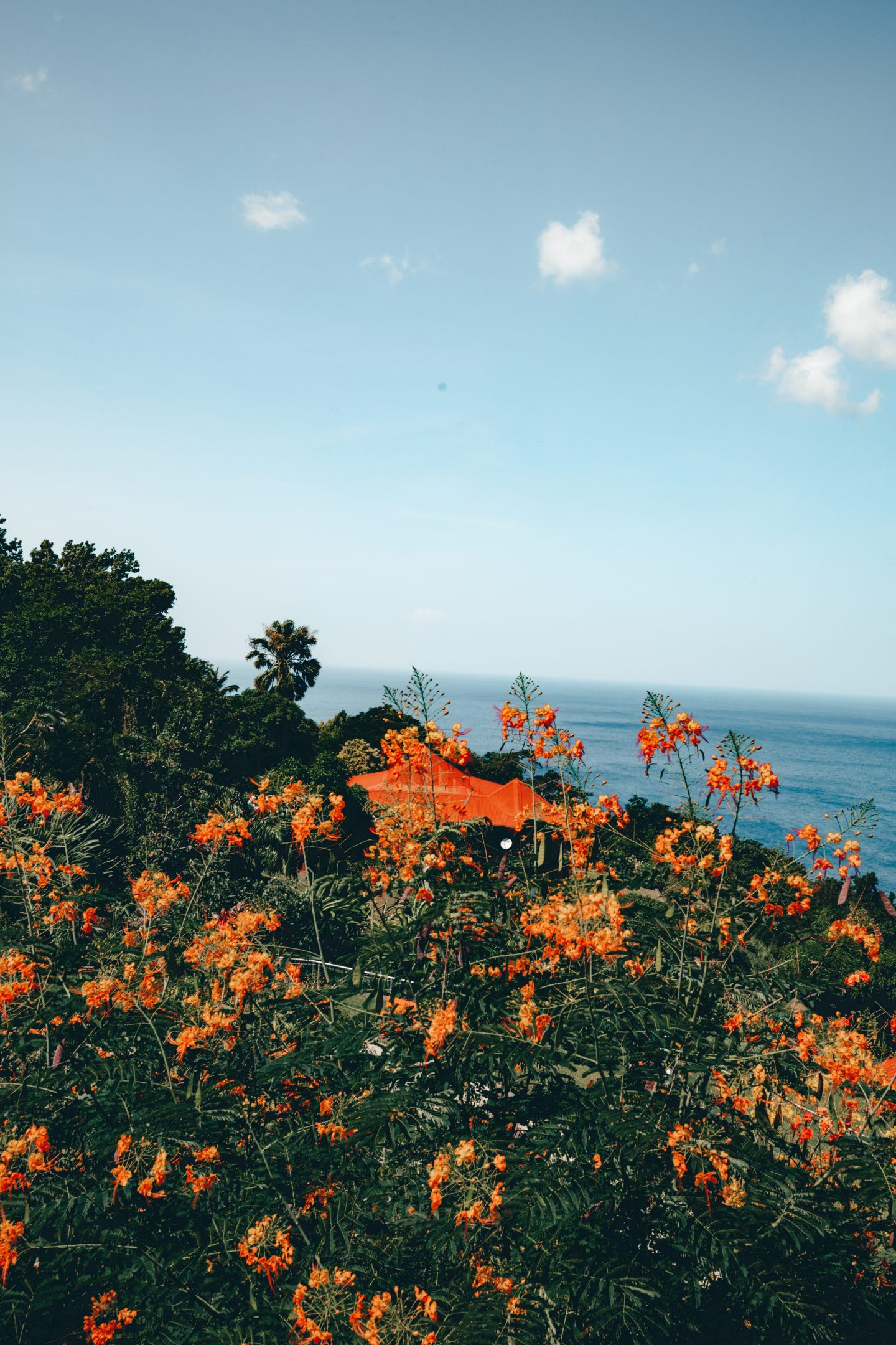 Jardin botanique Guadeloupe - Blondie Baby blog voyages