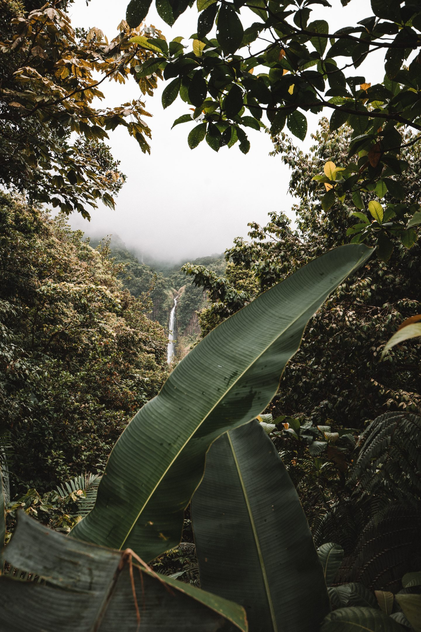 Chutes du Carbet Guadeloupe - Blondie Baby blog voyages
