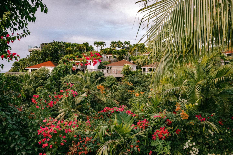 Séjour en Guadeloupe - Blondie Baby blog voyages